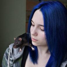Красивые синие волосы