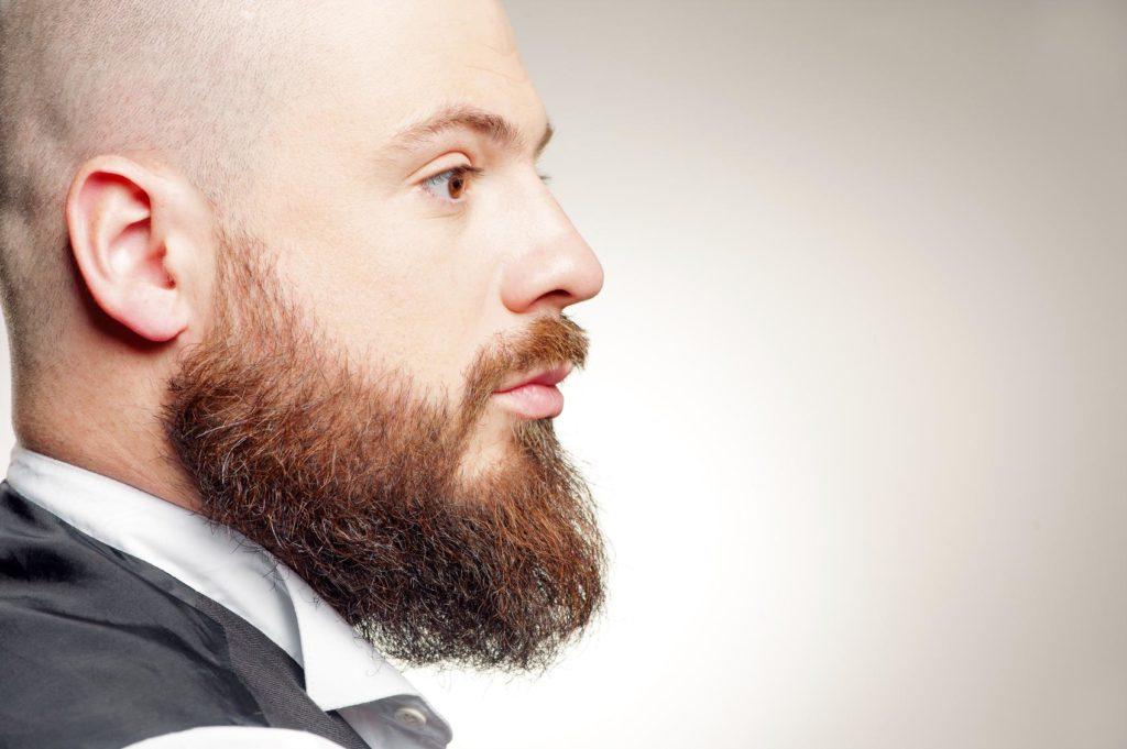 Борода скроет недостаток волос